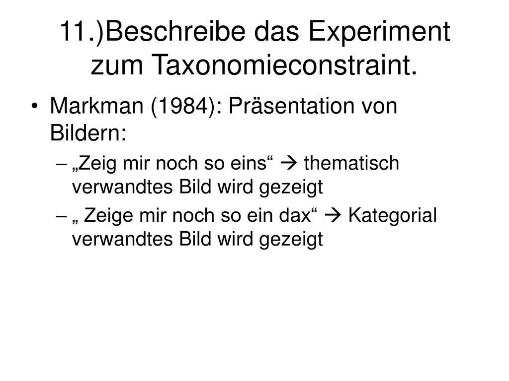 11.)Beschreibe das Experiment zum Taxonomieconstraint.