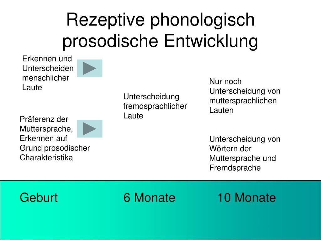 Rezeptive phonologisch prosodische Entwicklung