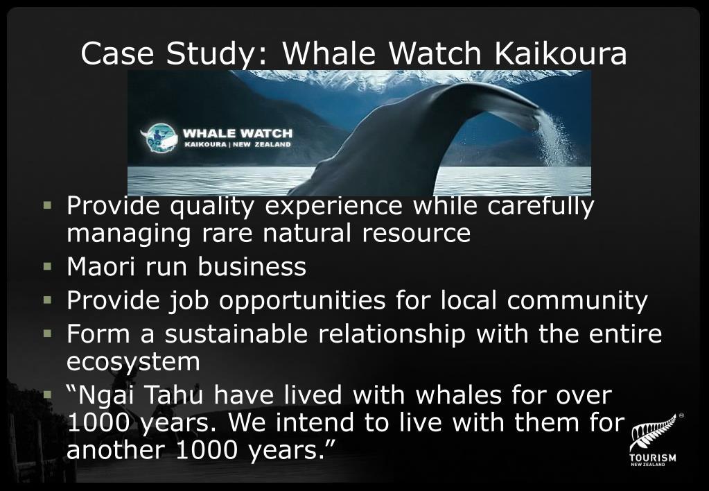 Case Study: Whale Watch Kaikoura