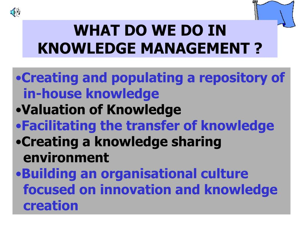 WHAT DO WE DO IN KNOWLEDGE MANAGEMENT ?
