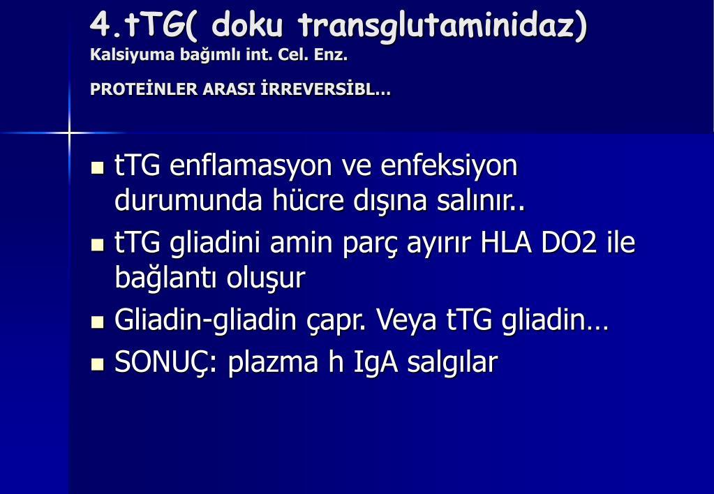 4.tTG( doku transglutaminidaz)