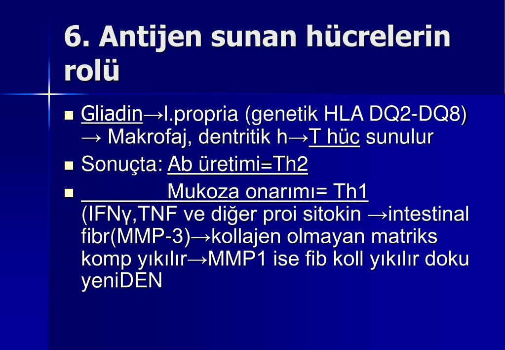 6. Antijen sunan hücrelerin rolü