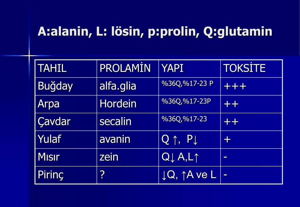 A:alanin, L: lösin, p:prolin, Q:glutamin