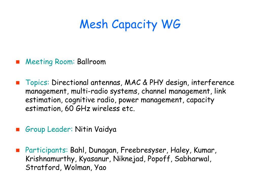 Mesh Capacity WG