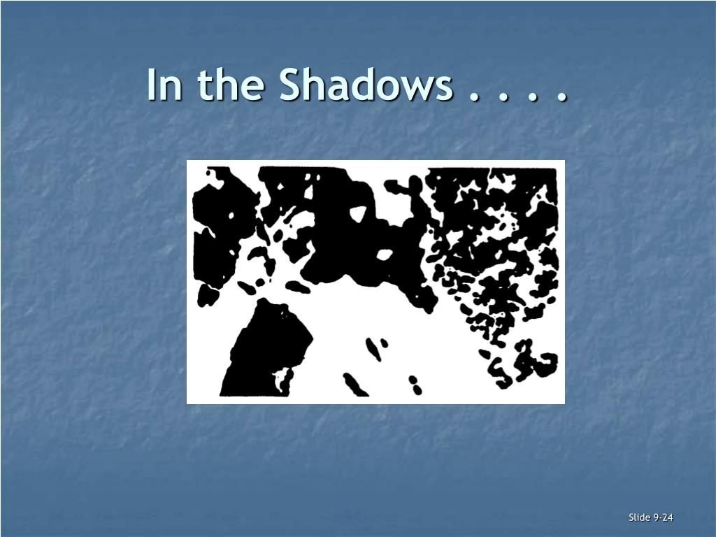 In the Shadows . . . .