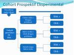 cohort prospektif eksperimental