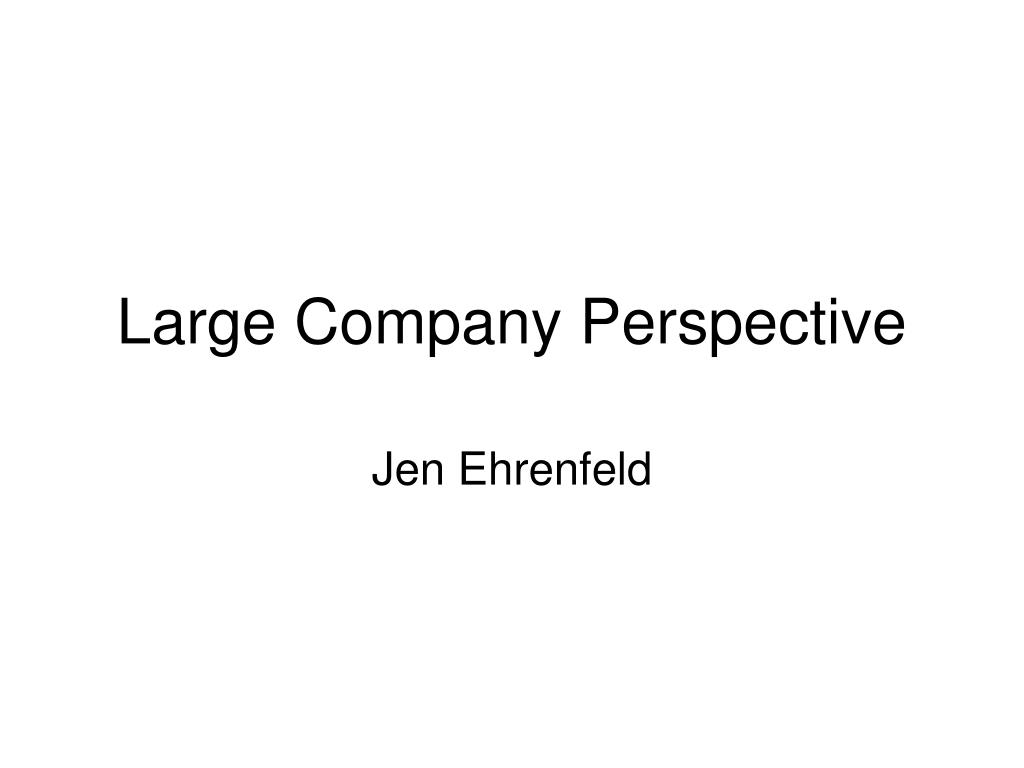 Large Company Perspective