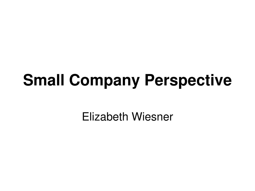 Small Company Perspective