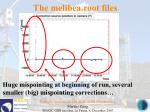the melibea root files59