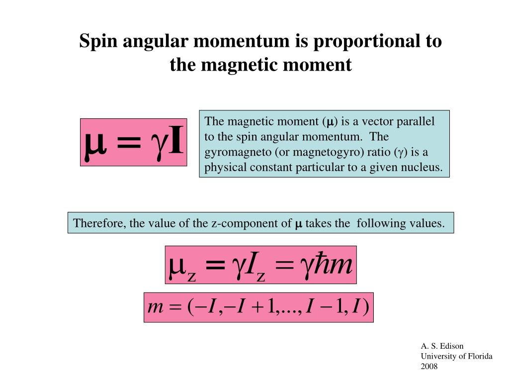 The magnetic moment (