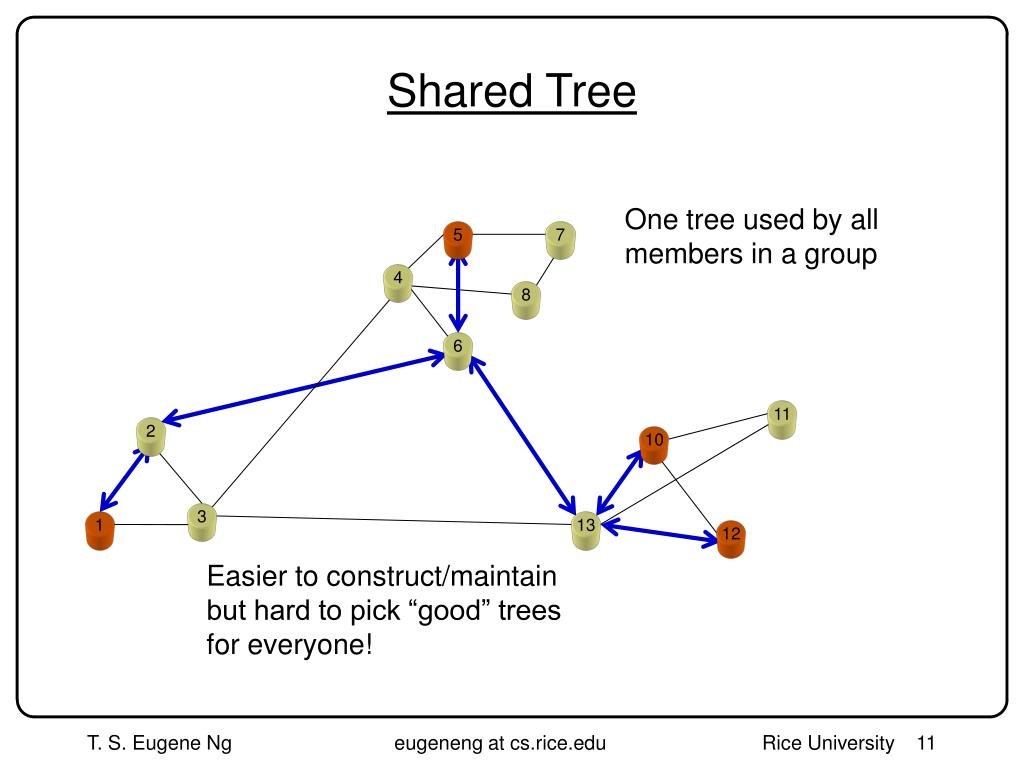 Shared Tree