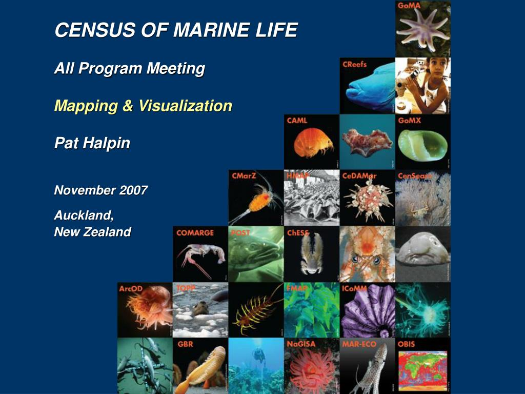 CENSUS OF MARINE LIFE