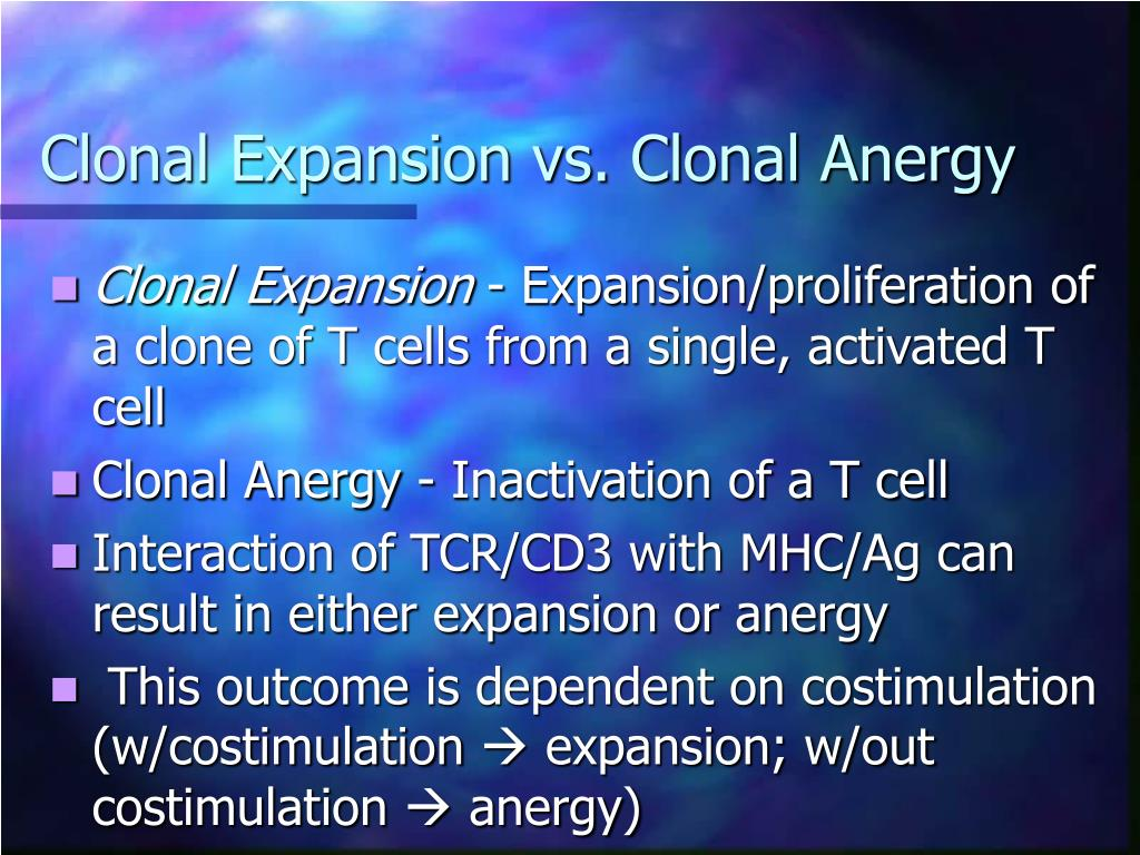 Clonal Expansion vs. Clonal Anergy
