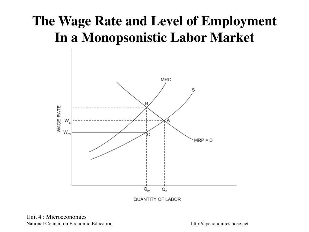 The Wage Rate and Level of Employment