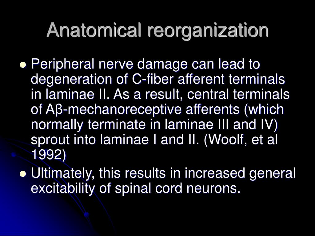 Anatomical reorganization