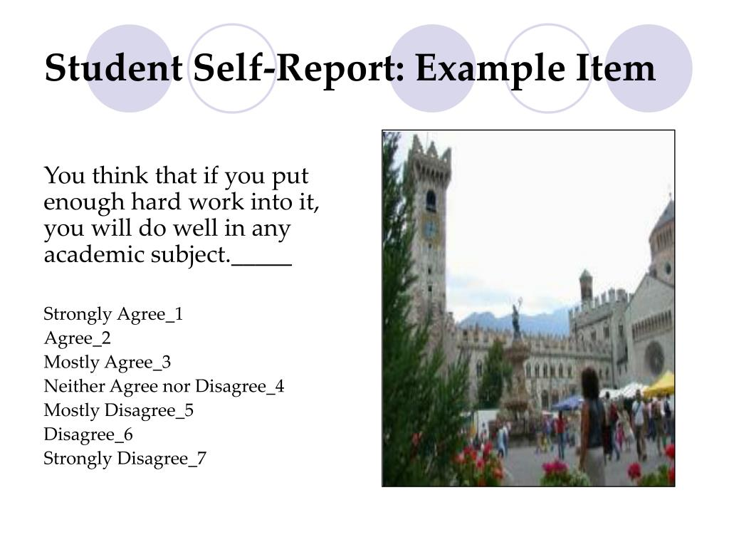 Student Self-Report: Example Item