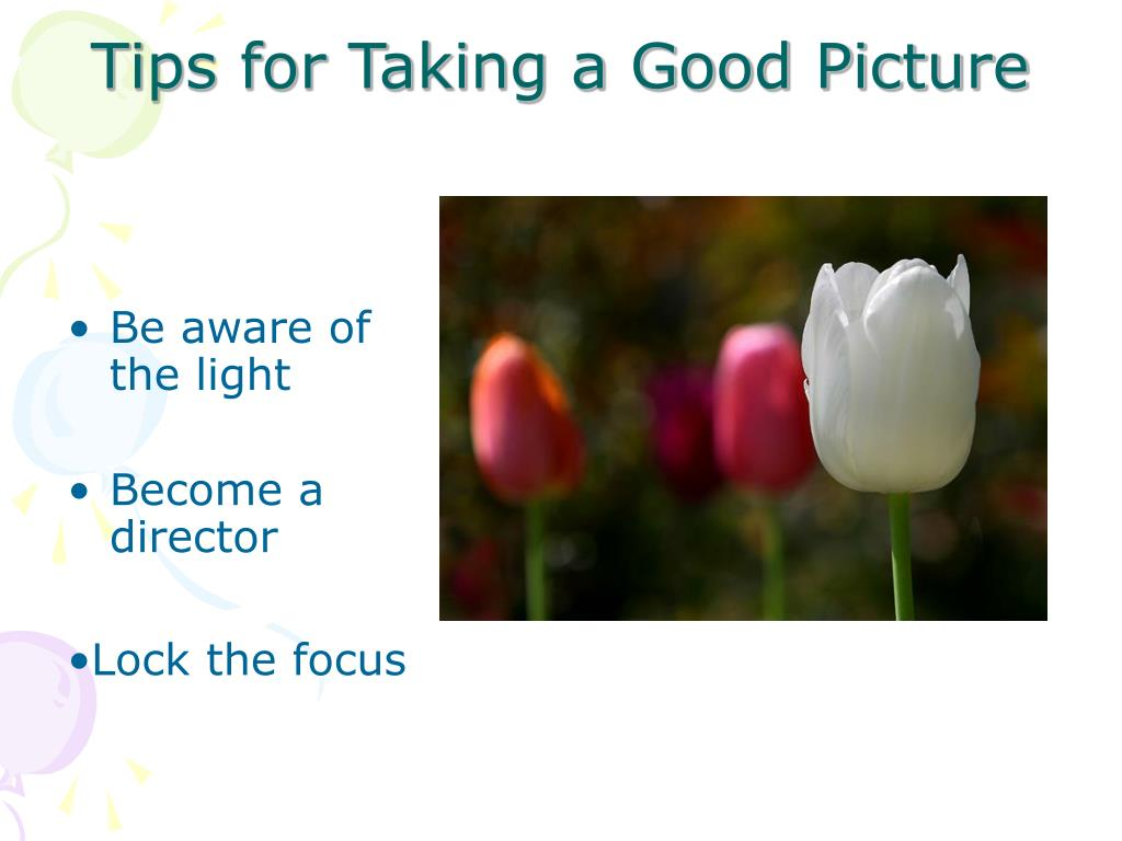 Tips for Taking a Good Picture