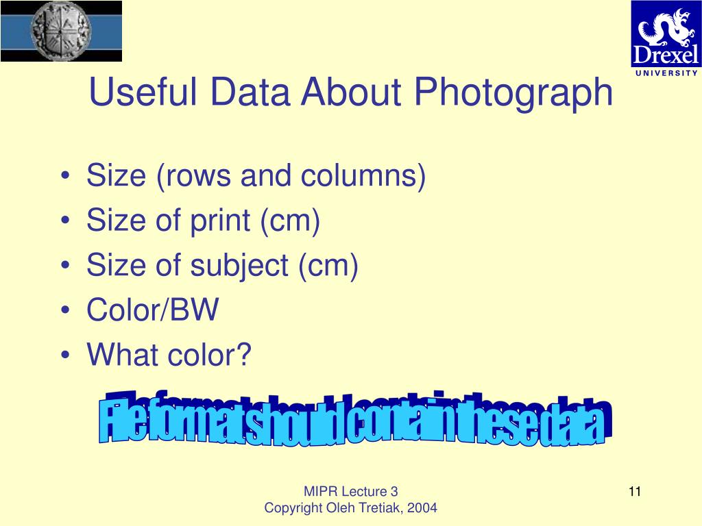 Useful Data About Photograph