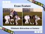 erase feature