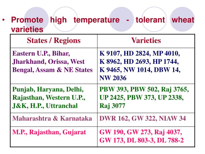 Promote high temperature tolerant wheat varieties