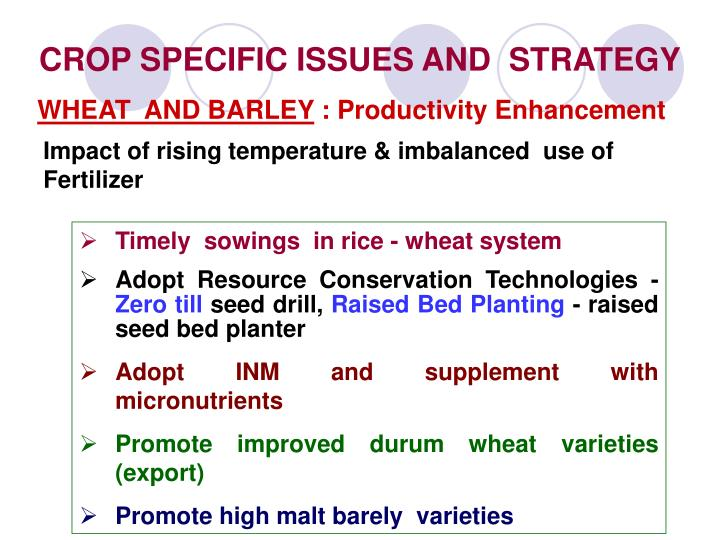 CROP SPECIFIC ISSUES AND  STRATEGY