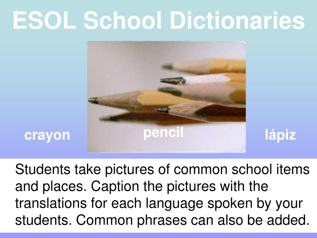 Students take pictures of common school items and places. Caption the pictures with the translations for each language spoken by your students. Common phrases can also be added.