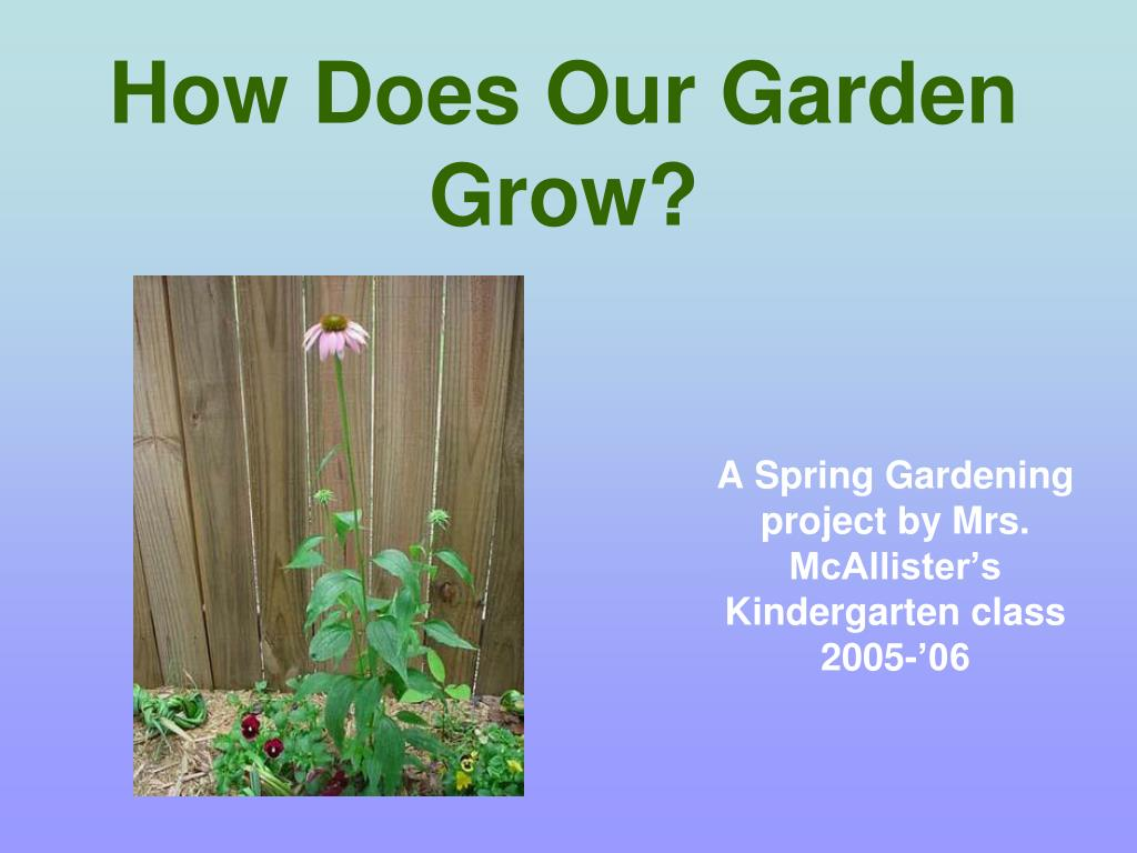 How Does Our Garden Grow?