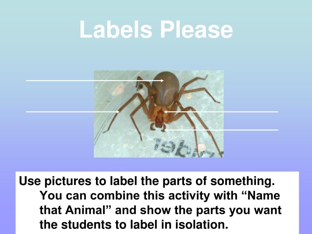 Labels Please
