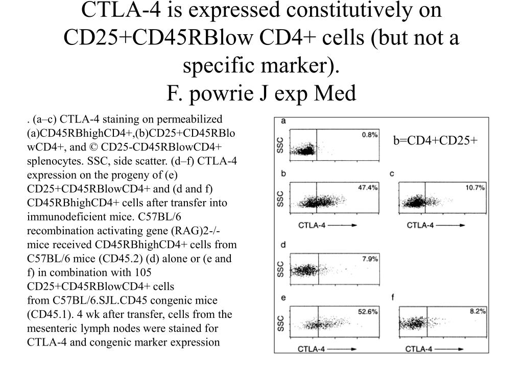 CTLA-4 is expressed constitutively on CD25+CD45RBlow CD4+ cells (but not a specific marker).