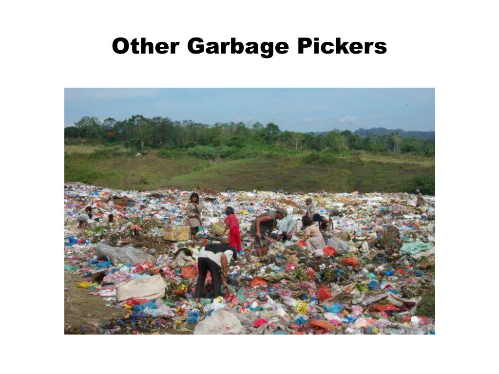 Other Garbage Pickers