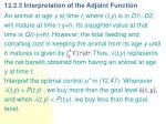 12 2 3 interpretation of the adjoint function
