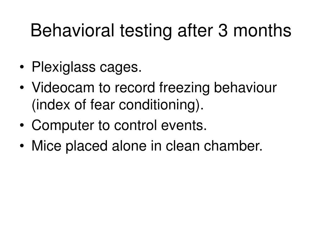 Behavioral testing after 3 months