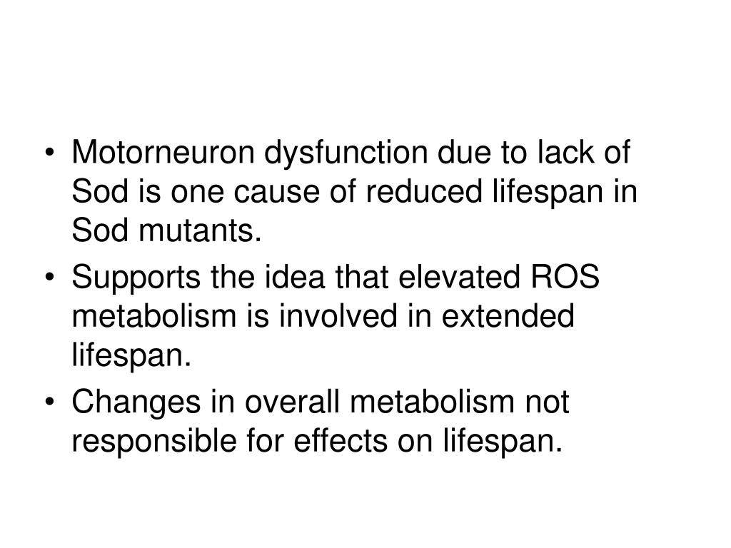 Motorneuron dysfunction due to lack of Sod is one cause of reduced lifespan in Sod mutants.