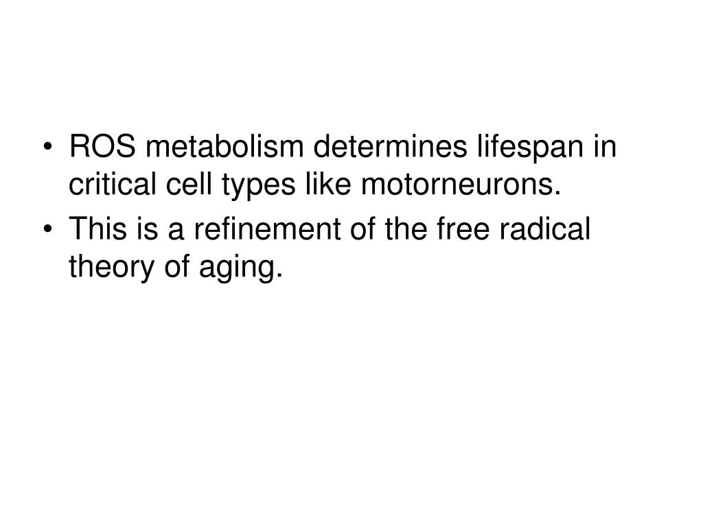 ROS metabolism determines lifespan in critical cell types like motorneurons.
