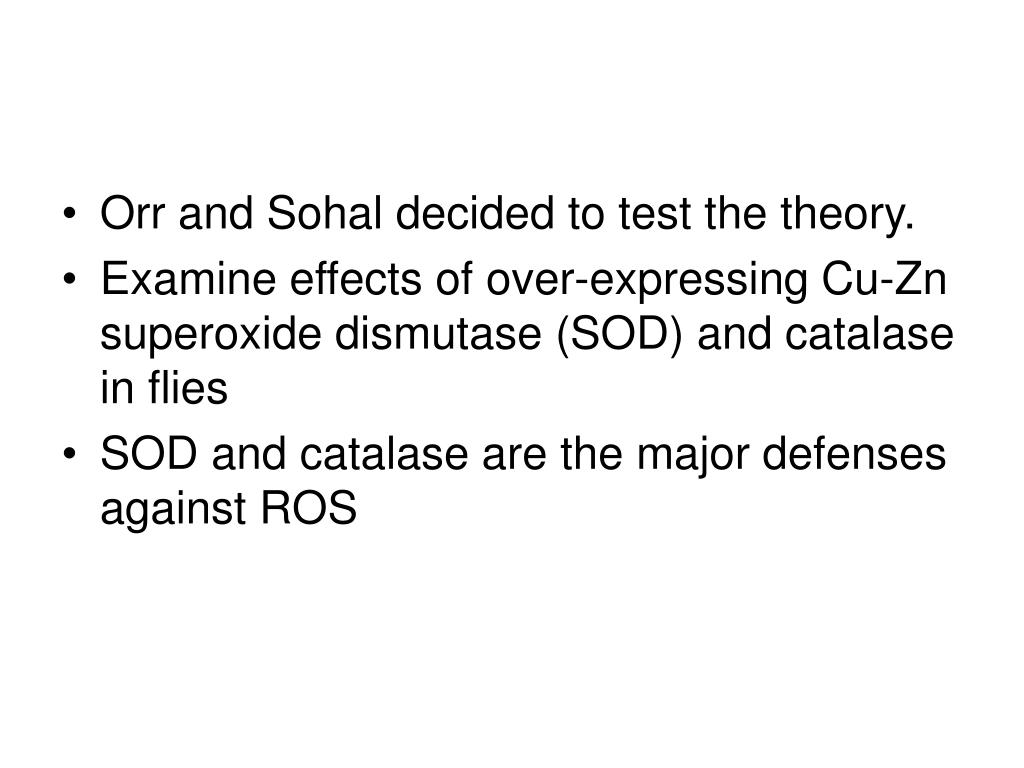 Orr and Sohal decided to test the theory.