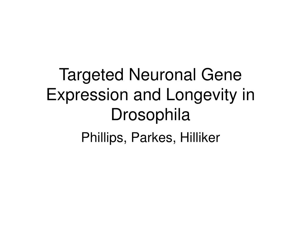 Targeted Neuronal Gene Expression and Longevity in Drosophila