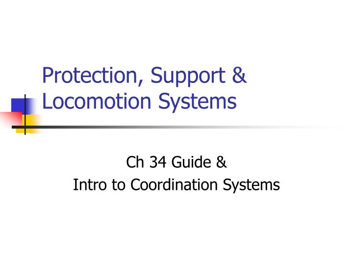 Protection support locomotion systems