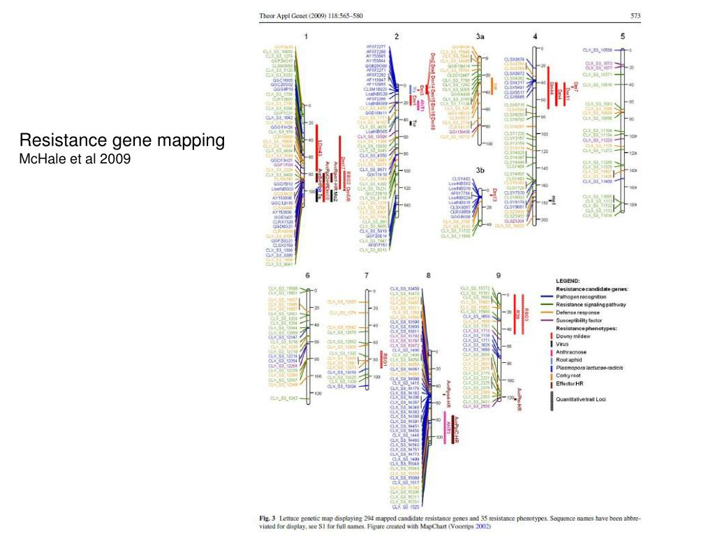 Resistance gene mapping
