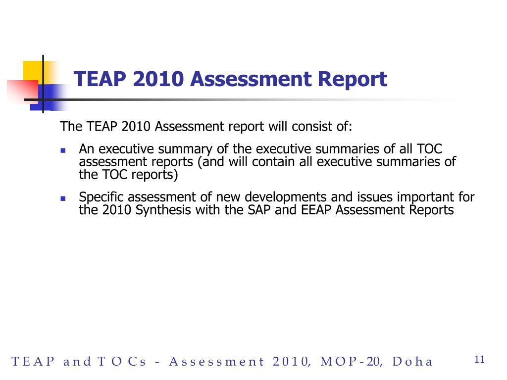 TEAP 2010 Assessment Report