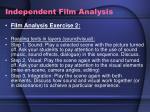 independent film analysis16