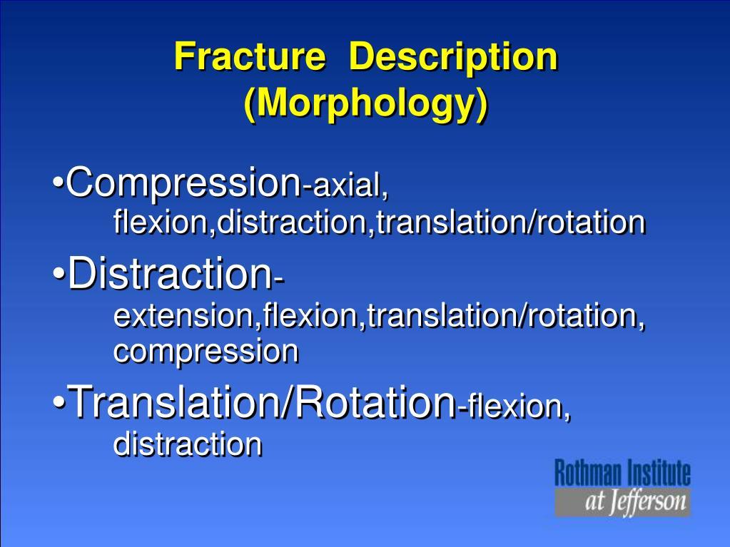 Fracture  Description