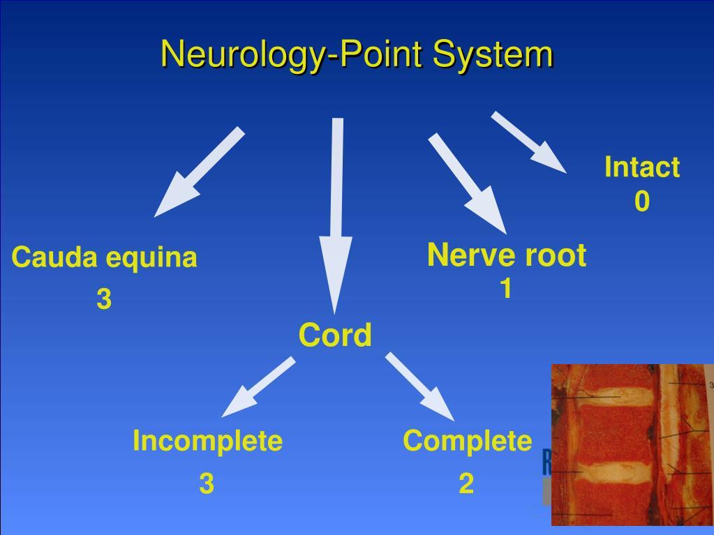 Neurology-Point System