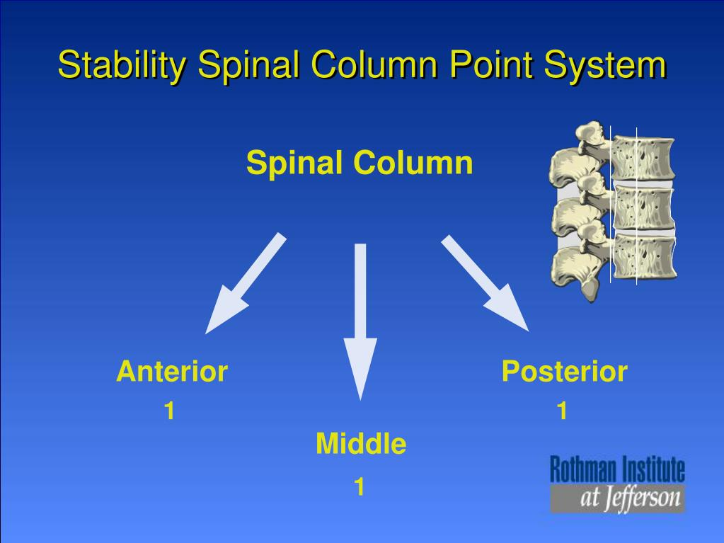 Stability Spinal Column Point System