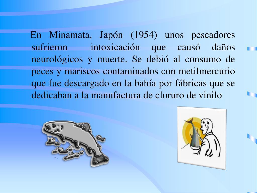 En Minamata, Japón (1954) unos pescadores sufrieron  intoxicación que causó daños neurológicos y muerte. Se debió al consumo de peces y mariscos contaminados con metilmercurio que fue descargado en la bahía por fábricas que se dedicaban a la manufactura de cloruro de vinilo