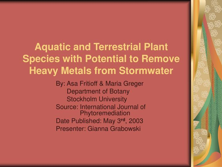 Aquatic and terrestrial plant species with potential to remove heavy metals from stormwater