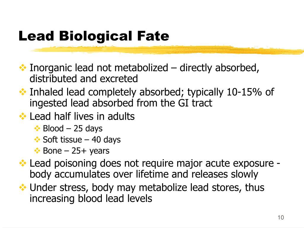 Lead Biological Fate
