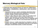 mercury biological fate