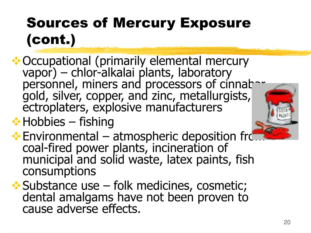 Sources of Mercury Exposure (cont.)