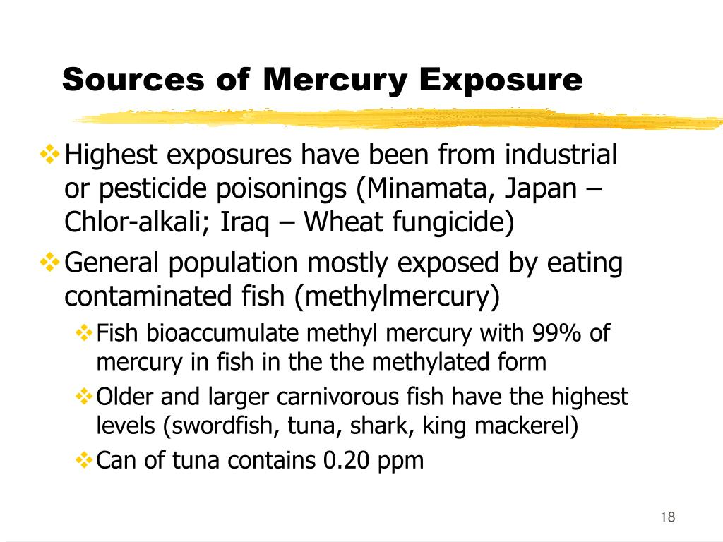 Sources of Mercury Exposure