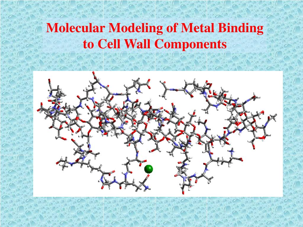 Molecular Modeling of Metal Binding